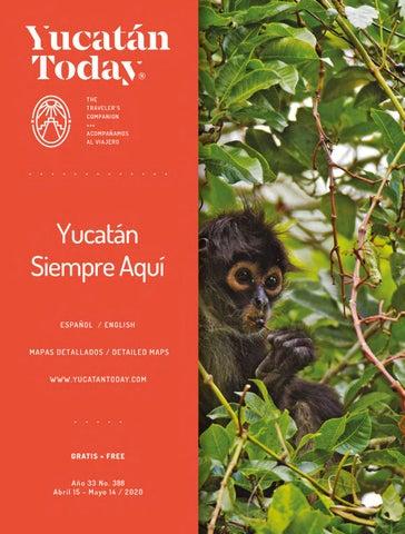 Conocer chicas de Yucatan–34465